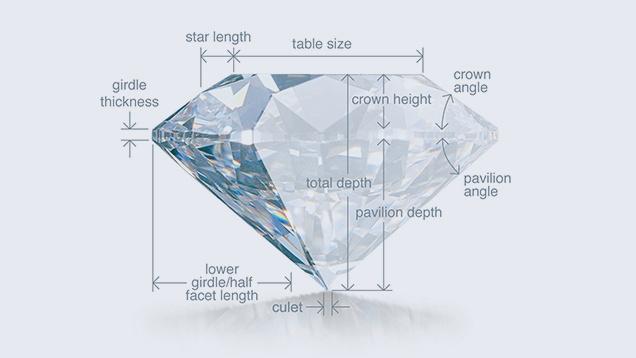Diamond Cut Anatomy Diagram