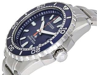 Promaster Citizen Diver Watch